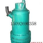 20100826/1282812349171.5KWBQS矿用隔爆型潜水排沙电泵绿.jpg