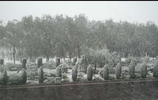 山西多地初夏飞雪 居民抱怨天气变化无常